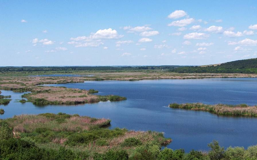 Биосферен резерват Сребърна